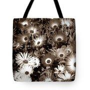 Sepia Asters Tote Bag
