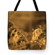 Sepia Cacti Close Up Tote Bag