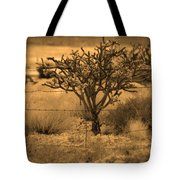 Sepia Cacti Roadside Tote Bag