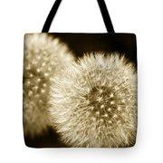 Sepia Dandelions Tote Bag