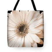 Sepia Gerber Daisy Flowers Tote Bag by Jennie Marie Schell