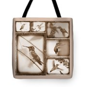 Sepia Hummingbird Collage Tote Bag