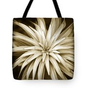 Sepia Plant Spiral Tote Bag