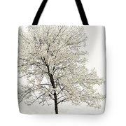 Sepia Square Tree Tote Bag