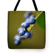 September Blues Tote Bag