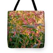 September Grasses Tote Bag