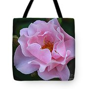 September Rose Tote Bag