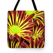 September's Radiance In A Flower Tote Bag