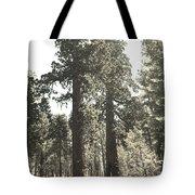 Sequoias Tote Bag