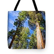 Sequoias Reaching To The Clouds In Mariposa Grove In Yosemite National Park-california Tote Bag