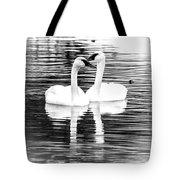 Serene Setting Tote Bag