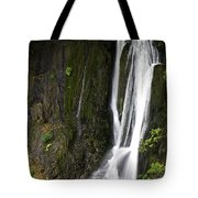 Serenity Two Tote Bag