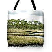 Serpentine Waters Tote Bag