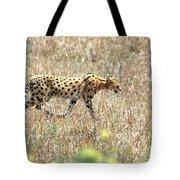 Serval Cat - Kenya Tote Bag