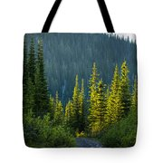 Set Down Your Coffee And Follow Me - 140702a-098 Tote Bag
