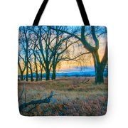 Setting Sun At Rocky Mountain Arsenal_1 Tote Bag by Tom Potter