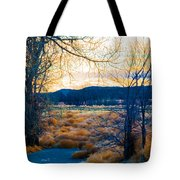 Setting Sun At Rocky Mountain Arsenal_2 Tote Bag by Tom Potter