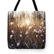 Setting Sun In Winter Forest Tote Bag