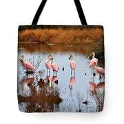Seven Spoonbills Tote Bag
