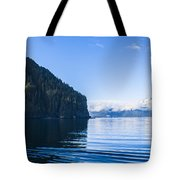 Sunny Cove 2 Tote Bag