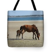 Shackleford Banks Foal Tote Bag