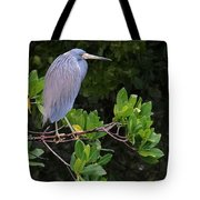 Shades Of Blue And Green Tote Bag