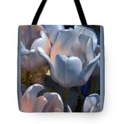 Shades Of Color Tote Bag