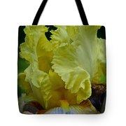 Shades Of Iris Tote Bag