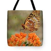 Shades Of Orange Tote Bag