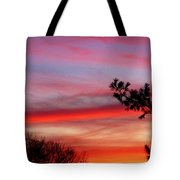 Shades Of Sunset Tote Bag