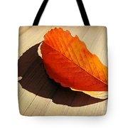 Shadow Cast By Leaf Tote Bag