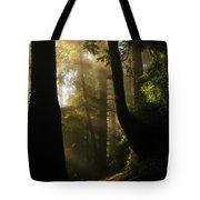 Shadow Dreams Tote Bag