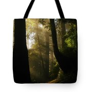 Shadow Dreams Tote Bag