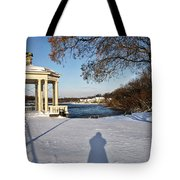 Shadow In The Snow Tote Bag