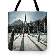 Shadow Of Former Selves Tote Bag