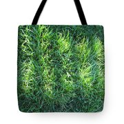 Shadow On The Grass Tote Bag