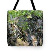 Shadow Rock Tote Bag