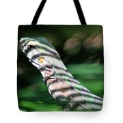 Shadow Stripes Tote Bag