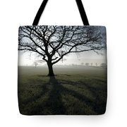 Shadow Tree Tote Bag