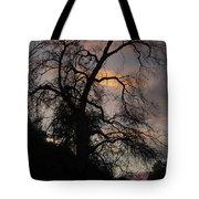 Shadowlands 5 Tote Bag