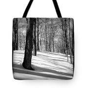 Shadows At Mccauley Mountain Tote Bag