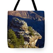 Shadows In The Canyon Tote Bag