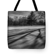 Shadows In The Park Tote Bag