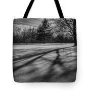 Shadows In The Park Square Tote Bag