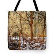 Shadows In The Urban Jungle Tote Bag