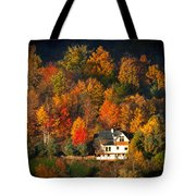 Shadows Of A Colorful Past Tote Bag