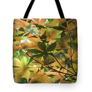 Shadows Of Maple  Tote Bag