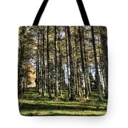 Shadows Of The Larch Forest Sunset No2 Tote Bag
