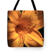 Day Lily Shadows Tote Bag