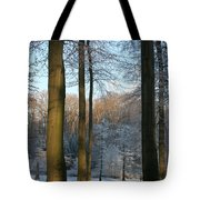 Light And Shadows In Wintertime Tote Bag
